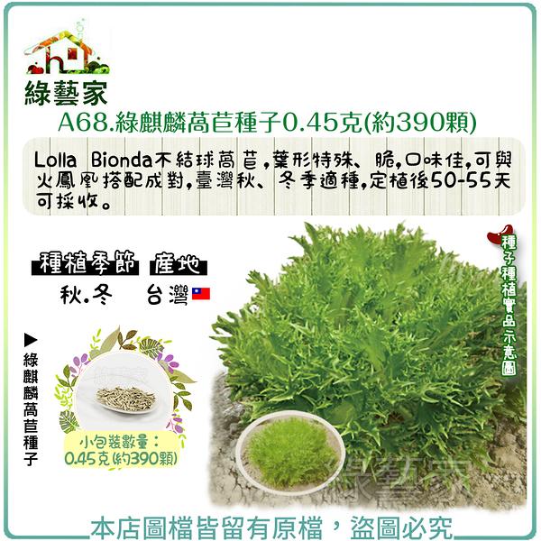 【綠藝家】A68.綠麒麟萵苣種子0.45克(約390顆)