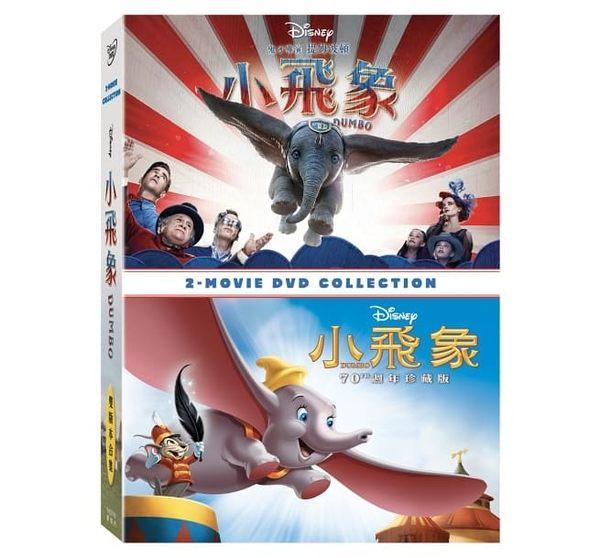 小飛象 動畫 & 真人 雙版本合集 雙DVD 免運 (購潮8) 得利 | 4710756317951