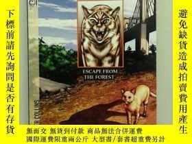 二手書博民逛書店Warriors:罕見escape from the forestY408174 Erin Hunter Ha