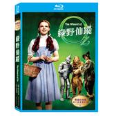 新動國際【綠野仙蹤The Wizard of Oz】(BD+高畫質DVD) 藍光雙碟版