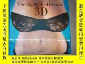 二手書博民逛書店THE罕見BIG BOOK OF BREASTS 【655】Y10970 DIAN HANSON TASCHE