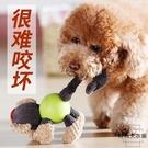 狗狗玩具小狗磨牙耐咬發聲泰迪柯基幼犬玩具球解悶神器寵物用品【時尚大衣櫥】