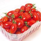 嚴選溫室玉女小番茄*1箱(600g/盒,共4小盒)