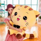 618好康又一發可愛貓毛絨玩具抱枕玩偶大臉貓公仔小貓咪布娃娃慶生禮物女WY