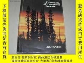 二手書博民逛書店A罕見Panorama of Canadian Forests【