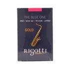 凱傑樂器 法國 Rigotti The ...