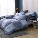 鴻宇 雙人床包薄被套組 天絲300織 洛普 台灣製 T20112