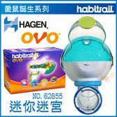 *King Wang*加拿大Hagen赫根《OVO迷你迷宮》Habitrail寵物鼠誕生系列NO.62655