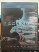 挖寶二手片-Q10-018-正版BD【敦克爾克大行動 雙碟版】-藍光電影(直購價)