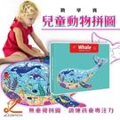 Whale 兒童益智動物拼圖 平面拼圖 美式拼圖