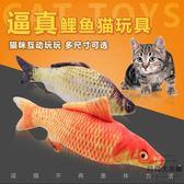 逗貓玩具貓咪互動寵物玩具 貓薄荷仿真鯽魚【時尚大衣櫥】