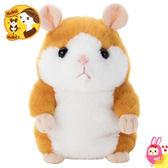 Hamee 日本 MimicryPet 鳴聲寵物 迴聲小倉鼠 哈姆太郎 安啾 回聲玩偶 楓糖布朗 284588
