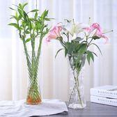玻璃花瓶六角透明水培富貴竹百合鮮花插花瓶【步行者戶外生活館】