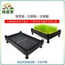 【綠藝家】A01芽菜箱、水耕箱、家庭式多...