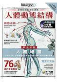人體與動物結構(2):人體動態結構