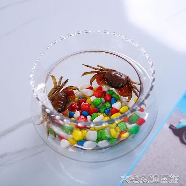 養殖箱烏龜缸客廳創意小型魚缸迷你烏龜缸玻璃魚缸圓形家用金魚缸辦公桌面擺件YJT 【快速出貨】