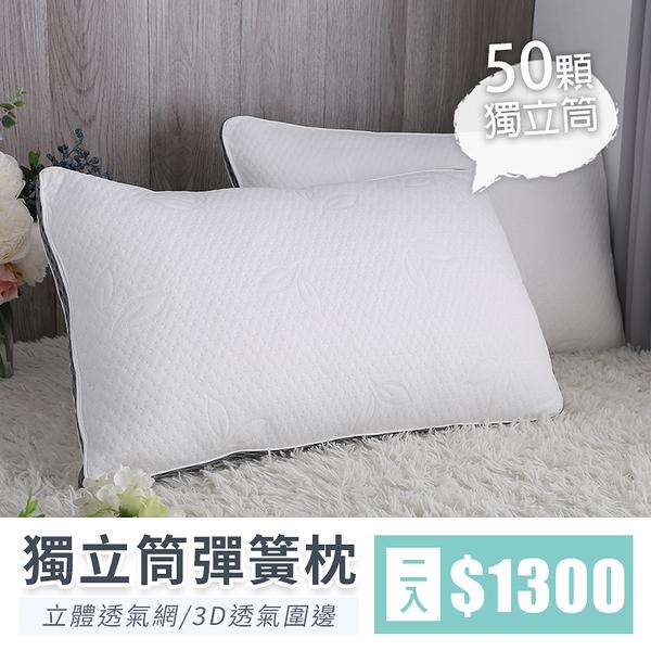 【IKHOUSE】獨立筒彈簧枕(兩入)