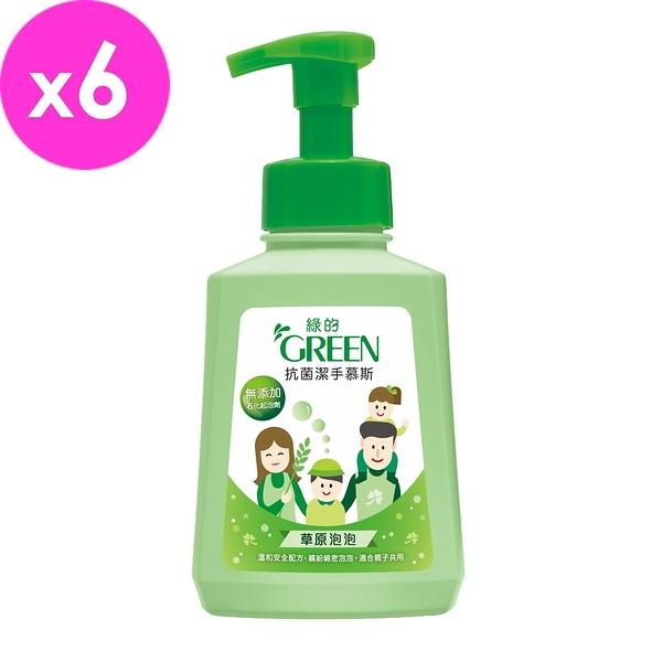 綠的GREEN 抗菌潔手慕斯-草原泡泡500mlx6入組