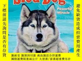 二手書博民逛書店Sled罕見Dog: Powerful Miracle (Built for the Cold: Arctic A