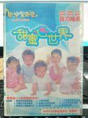挖寶二手片-P03-330-正版VCD-動畫【歡樂驚奇屋 甜蜜心世界 CD+VCD雙碟版】-影印海報
