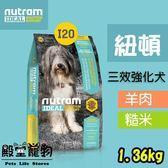 【殿堂寵物】nutram紐頓 專業理想系列 I20 三效強化 1.36kg