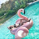 泳圈-新款充氣玫瑰金火烈鳥香檳金浮床浮排游泳圈充氣坐騎玩具游泳裝備-奇幻樂園