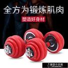 哑铃 男生家用健身器材電鍍紅字實心鐵啞鈴杠鈴10公斤20公斤30公斤一對