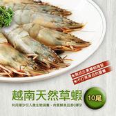 【屏聚美食】越南天然大草蝦x3盒免運組(10尾/約380g/盒)_第2件以上每件↘988元