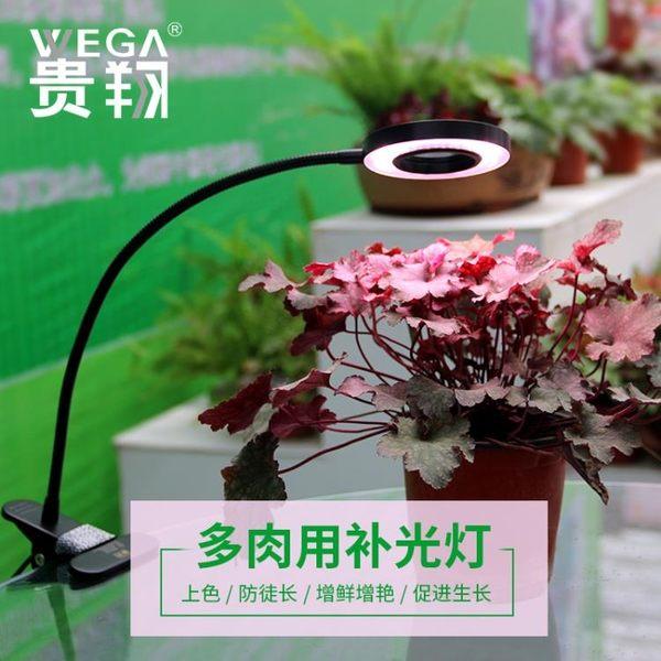 貴翔 多肉補光燈USB夾子式桌面臺燈全光譜LED盆景花卉植物生長燈 MKS免運