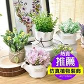 仿真植物裝飾北歐綠植室內盆栽客廳擺件假花卉多肉小盆景家居擺設 居享優品