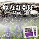 魔力奇亞籽Chia(5入)