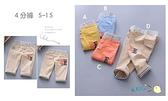 童裝 台灣現貨 95%棉 彩扣格紋邊短褲,4色可選【91374】