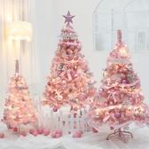 聖誕樹 圣誕節網紅ins風粉色植絨圣誕樹套餐1.2米1.5米商場櫥窗家用裝飾【快速出貨】WY