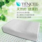 天絲TELCEL【 曲線型乳膠枕】/一入 透氣孔設計 舒適不悶熱 給你最舒適的睡眠品質 洛莉亞