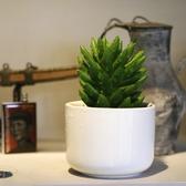 CARMO白色直筒小圓陶瓷盆 陶瓷多肉花盆盆栽【BI21003】
