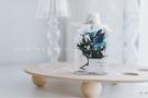 浮游花 「一個抽屜 」手作復古永生浮游花瓶植物標本干花擺件生日禮物交換禮物
