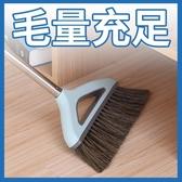單個家用鬃毛加厚掃把塑料簸箕軟毛