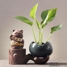 創意綠蘿水培花瓶水養植物盆器時尚個性花盆器皿容器客廳裝飾擺件 【快速出貨】