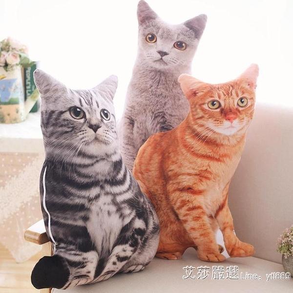 可拆洗日本仿真貓咪抱枕3D毛絨玩具貓型玩偶長條可愛少女心禮物 【2021特惠】