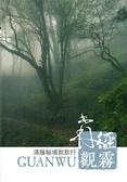 森徑觀霧:清蔭秘境款款行