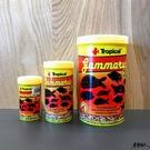 波蘭 Tropical 德比克 GAMMARUS 高蛋白乾蝦 【250ml 】烏龜 兩棲 爬蟲 營養飼料 魚事職人
