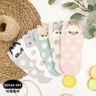 【正韓直送】小耳朵可愛動物短襪 韓國襪子...