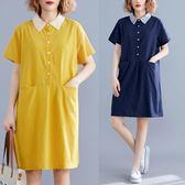 原創文藝胖MM寬松減齡大碼POLO領襯衫式連衣裙女5358(BB2043-C)