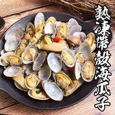 極鮮熟凍帶殼海瓜子*1包組(500g/包)