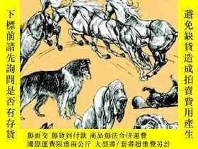 二手書博民逛書店The罕見Art of Animal Drawing 動物繪畫的藝術 英文原版Y238343 Hultgren