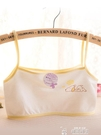 學生內衣純棉內衣少女文胸小學生11發育期大童小背心女孩9-12歲女童10兒童特賣