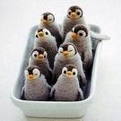 心動小羊^^仿真可愛企鵝 美麗諾羊毛羊毛氈材料包