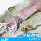 ◆ 台北魚市 ◆ 透抽 ( 船釣 ) 330g±3%