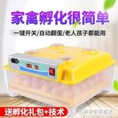 全自動孵化機小型家用型迷你孵化器小雞蛋孵化箱雞鴨鵝孵蛋器 NMS名購居家