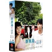 峇里島的日子 DVD ( 河智苑/趙仁成(趙寅成)/蘇志燮/朴藝珍 )